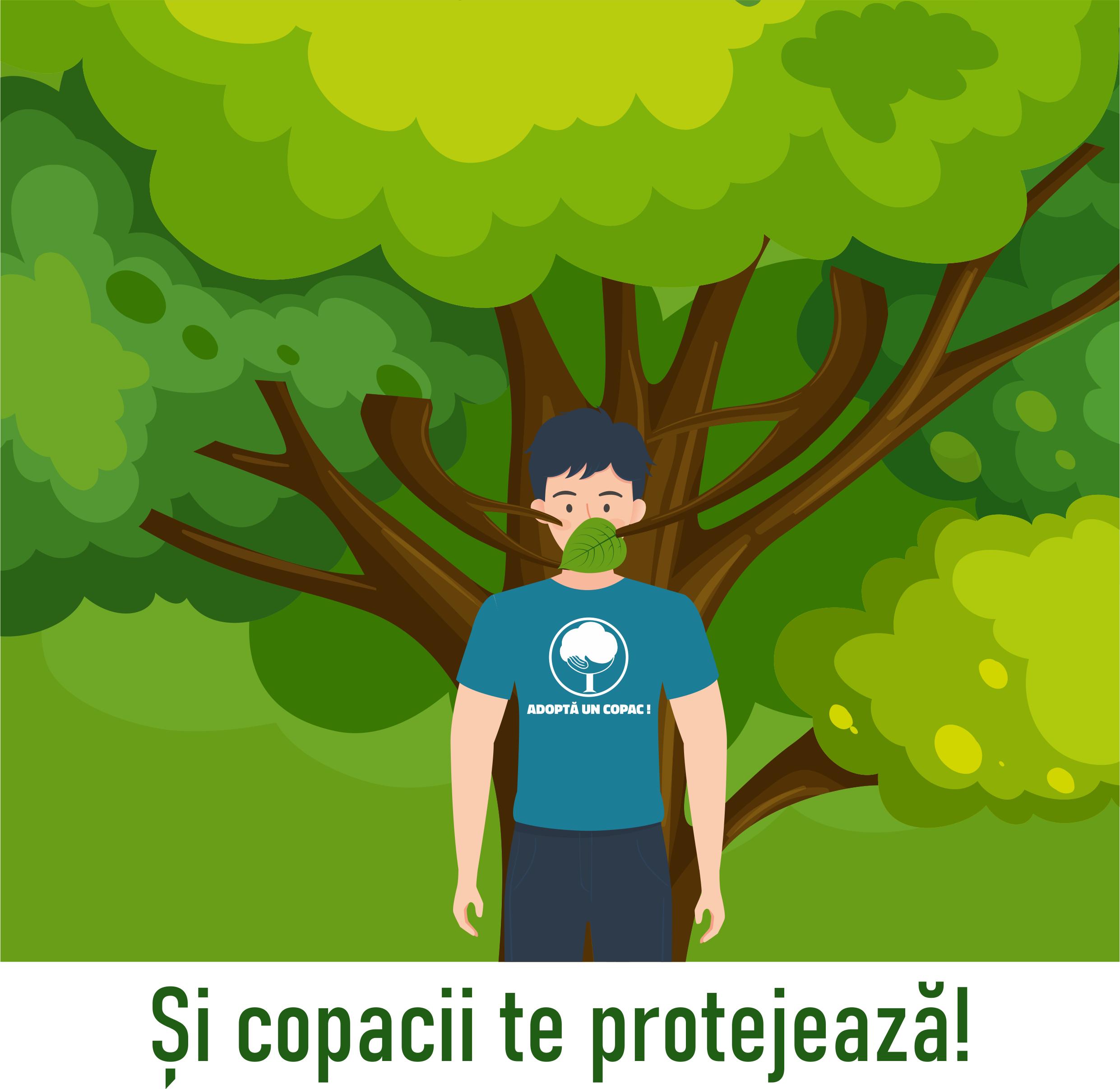 Si copacii te protejeaza